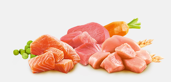Why Real Chicken, Salmon or Tuna?
